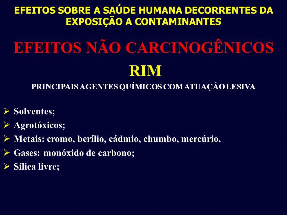 EFEITOS SOBRE A SAÚDE HUMANA DECORRENTES DA EXPOSIÇÃO A CONTAMINANTES EFEITOS NÃO CARCINOGÊNICOS RIM PRINCIPAIS AGENTES QUÍMICOS COM ATUAÇÃO LESIVA So