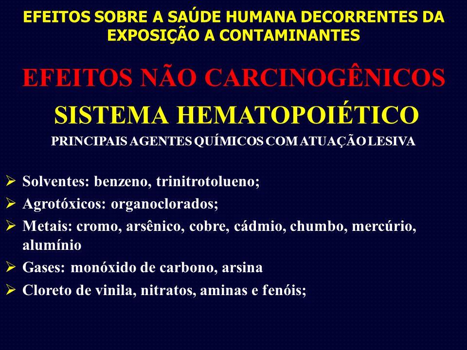 EFEITOS SOBRE A SAÚDE HUMANA DECORRENTES DA EXPOSIÇÃO A CONTAMINANTES EFEITOS NÃO CARCINOGÊNICOS SISTEMA HEMATOPOIÉTICO PRINCIPAIS AGENTES QUÍMICOS COM ATUAÇÃO LESIVA Solventes: benzeno, trinitrotolueno; Agrotóxicos: organoclorados; Metais: cromo, arsênico, cobre, cádmio, chumbo, mercúrio, alumínio Gases: monóxido de carbono, arsina Cloreto de vinila, nitratos, aminas e fenóis;