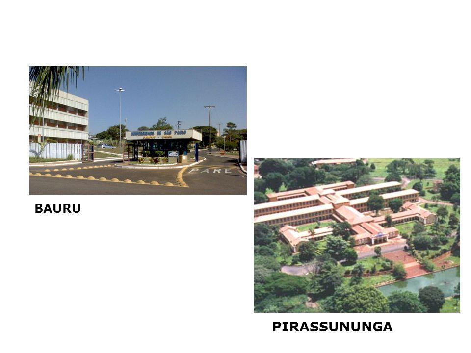 PIRASSUNUNGA BAURU