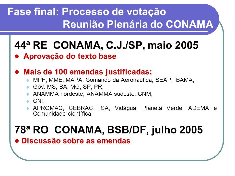 Fase final: Processo de votação Reunião Plenária do CONAMA 44ª RE CONAMA, C.J./SP, maio 2005 Aprovação do texto base Mais de 100 emendas justificadas: