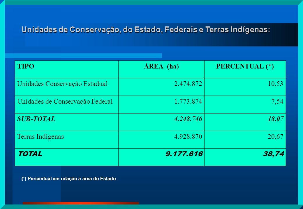 Unidades de Conservação, do Estado, Federais e Terras Indígenas: TIPOÁREA (ha)PERCENTUAL (*) Unidades Conservação Estadual2.474.87210,53 Unidades de C