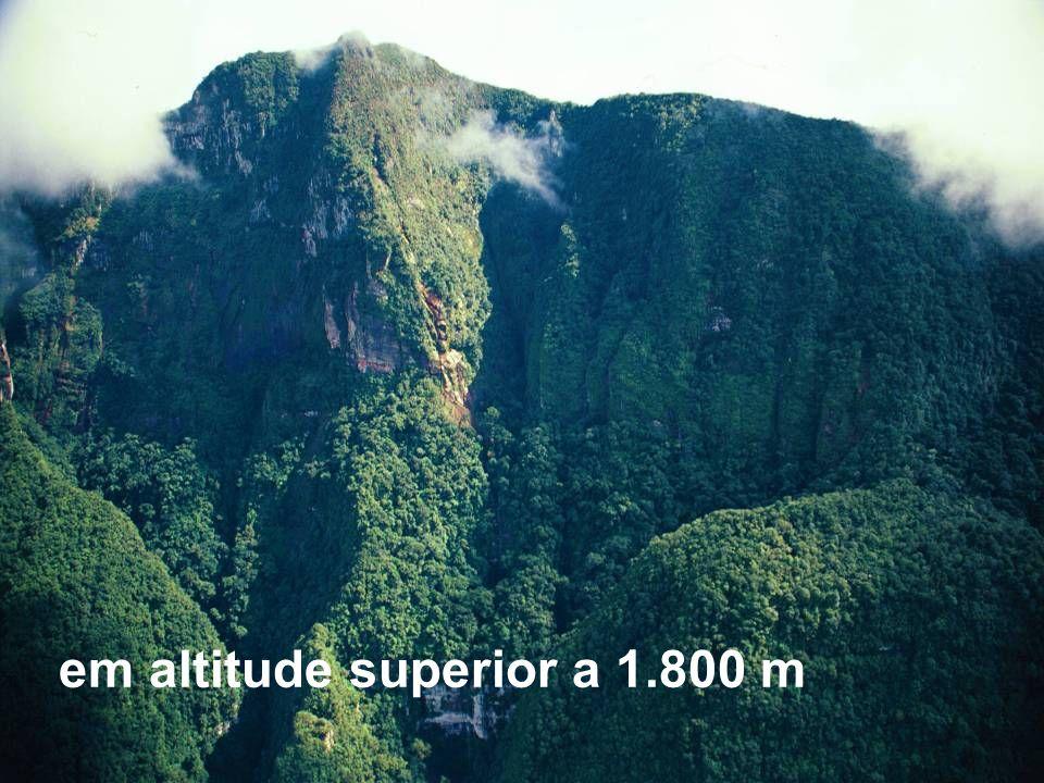 em altitude superior a 1.800 m