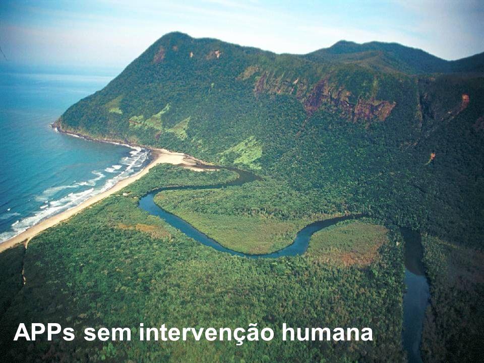 APPs sem intervenção humana