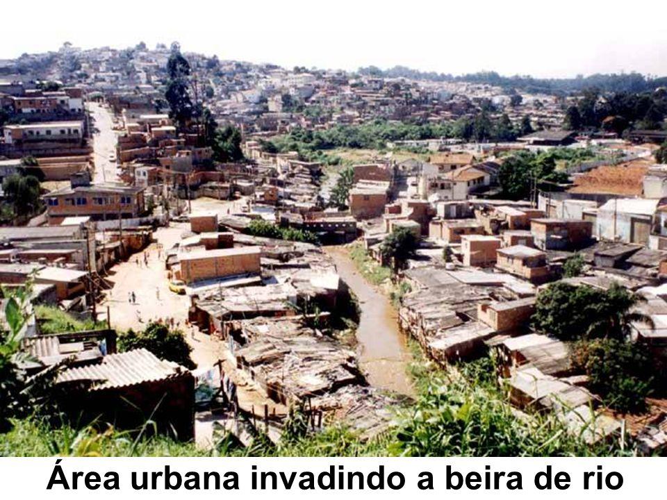 Área urbana invadindo a beira de rio