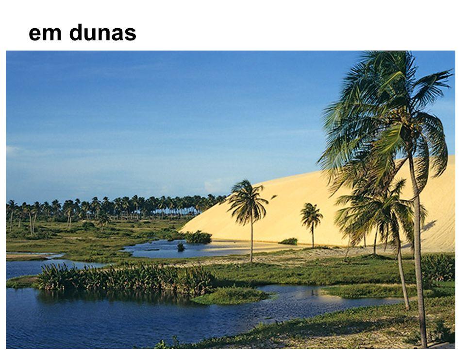 em dunas