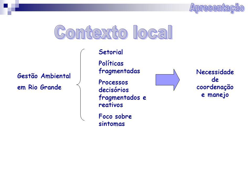 Gestão Ambiental em Rio Grande Setorial Políticas fragmentadas Processos decisórios fragmentados e reativos Foco sobre sintomas Necessidade de coorden