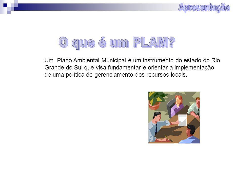 Um Plano Ambiental Municipal é um instrumento do estado do Rio Grande do Sul que visa fundamentar e orientar a implementação de uma política de gerenc