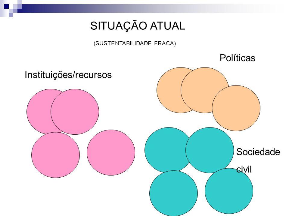 Instituições/recursos Políticas Sociedade civil SITUAÇÃO ATUAL (SUSTENTABILIDADE FRACA)