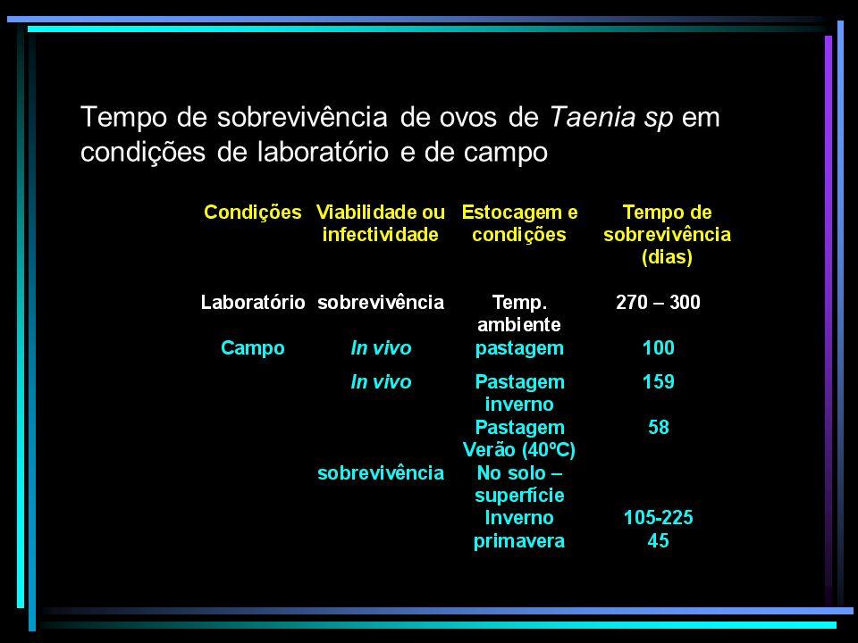 Tempo de sobrevivência de microrganismos patogênicos em vegetais e raízes ( BERRON, 1984 citado por ADEME, 1998)