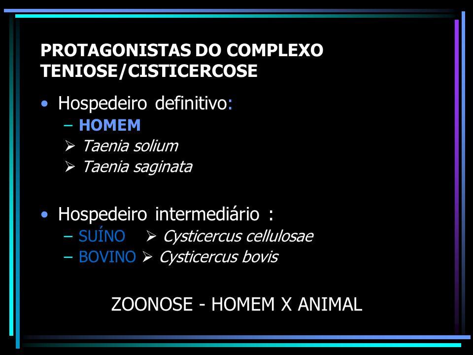 Prevalência de Taenia sp. (OMS) Taenia saginata: –Países altamente endêmicos = 10% –Moderada prevalência = 0,1 a 10% –Baixa endemicidade < 0,1% BRASIL