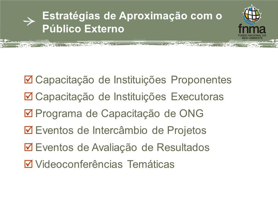 Estratégias de Aproximação com o Público Externo Capacitação de Instituições Proponentes Capacitação de Instituições Executoras Programa de Capacitação de ONG Eventos de Intercâmbio de Projetos Eventos de Avaliação de Resultados Videoconferências Temáticas