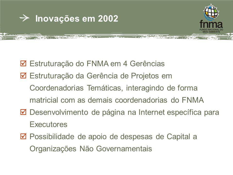 Inovações em 2002 Estruturação do FNMA em 4 Gerências Estruturação da Gerência de Projetos em Coordenadorias Temáticas, interagindo de forma matricial com as demais coordenadorias do FNMA Desenvolvimento de página na Internet específica para Executores Possibilidade de apoio de despesas de Capital a Organizações Não Governamentais