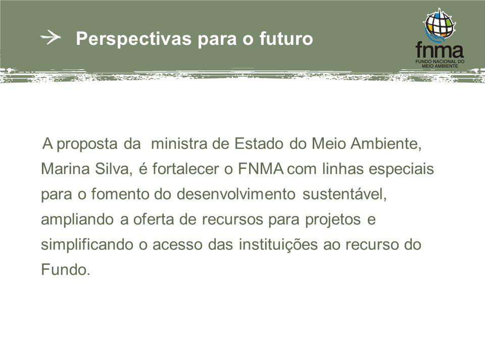 Perspectivas para o futuro A proposta da ministra de Estado do Meio Ambiente, Marina Silva, é fortalecer o FNMA com linhas especiais para o fomento do desenvolvimento sustentável, ampliando a oferta de recursos para projetos e simplificando o acesso das instituições ao recurso do Fundo.