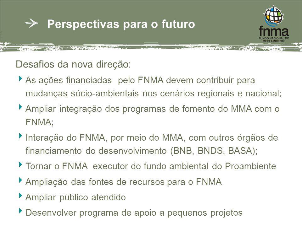 Perspectivas para o futuro Desafios da nova direção: As ações financiadas pelo FNMA devem contribuir para mudanças sócio-ambientais nos cenários regionais e nacional; Ampliar integração dos programas de fomento do MMA com o FNMA; Interação do FNMA, por meio do MMA, com outros órgãos de financiamento do desenvolvimento (BNB, BNDS, BASA); Tornar o FNMA executor do fundo ambiental do Proambiente Ampliação das fontes de recursos para o FNMA Ampliar público atendido Desenvolver programa de apoio a pequenos projetos