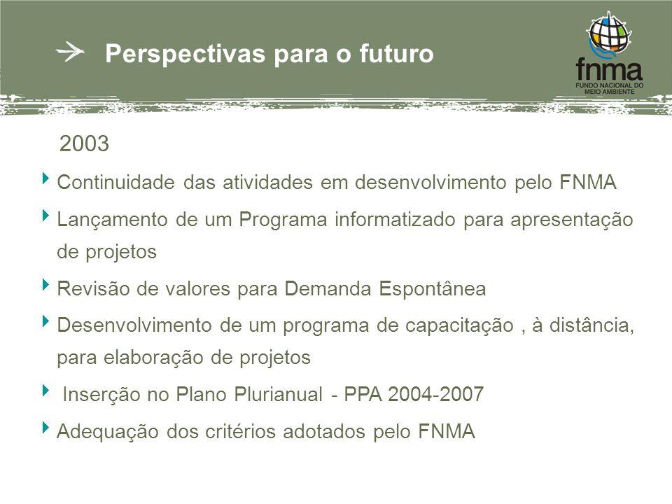 Perspectivas para o futuro 2003 Continuidade das atividades em desenvolvimento pelo FNMA Lançamento de um Programa informatizado para apresentação de projetos Revisão de valores para Demanda Espontânea Desenvolvimento de um programa de capacitação, à distância, para elaboração de projetos Inserção no Plano Plurianual - PPA 2004-2007 Adequação dos critérios adotados pelo FNMA