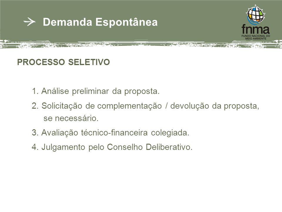 PROCESSO SELETIVO 1. Análise preliminar da proposta.