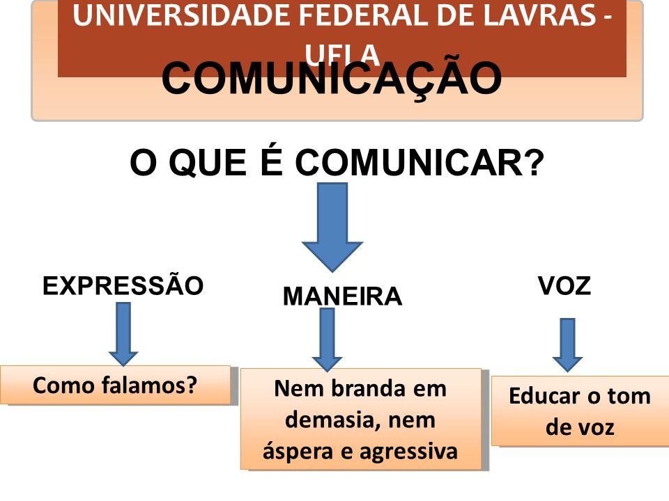 UNIVERSIDADE FEDERAL DE LAVRAS - UFLA COMUNICAÇÃO O QUE É COMUNICAR? EXPRESSÃO MANEIRA VOZ Nem branda em demasia, nem áspera e agressiva Educar o tom