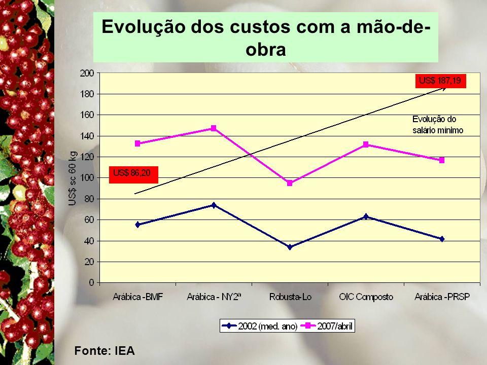 Evolução dos custos com a mão-de- obra Fonte: IEA