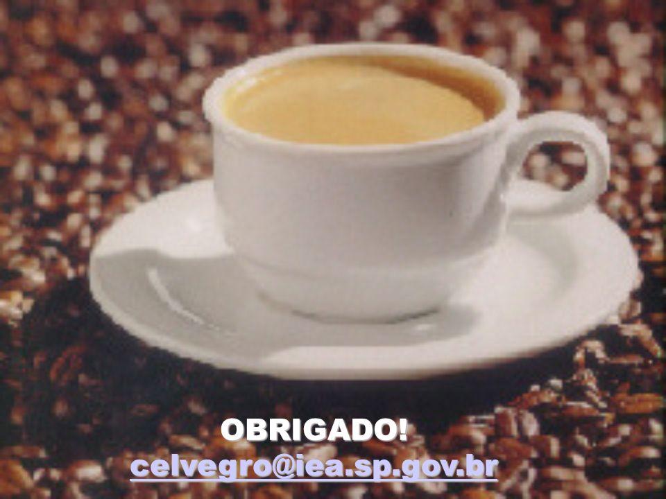 OBRIGADO! celvegro@iea.sp.gov.br