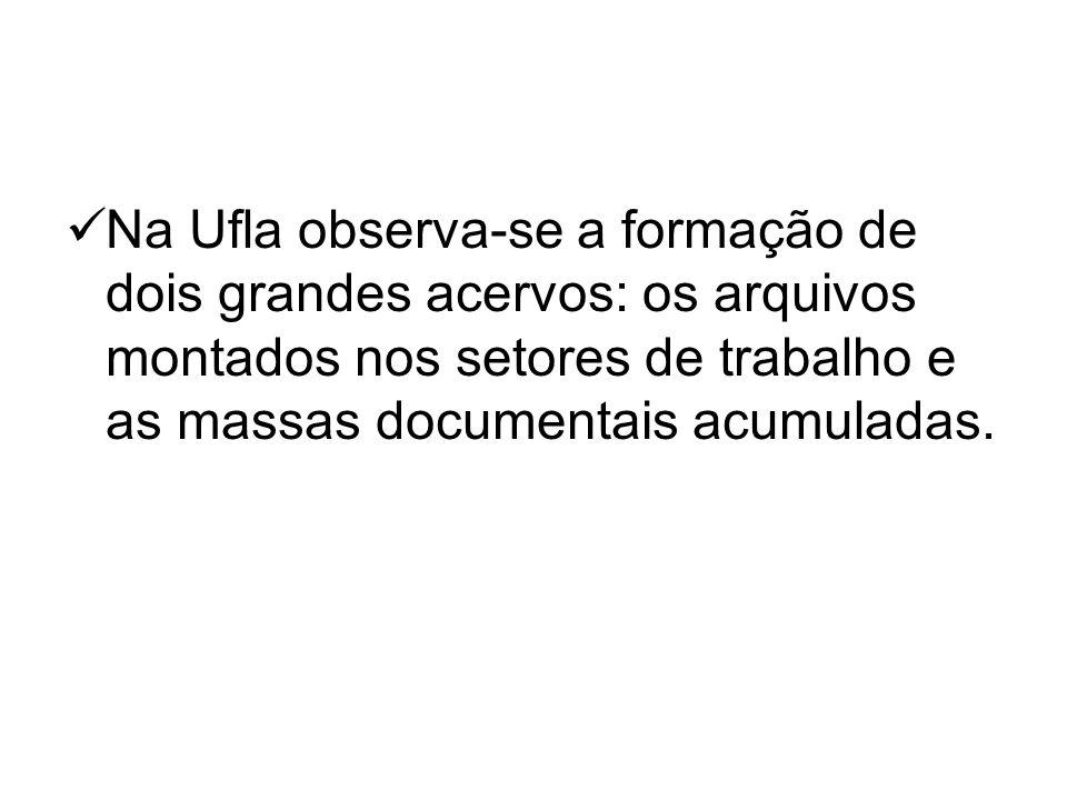 Na Ufla observa-se a formação de dois grandes acervos: os arquivos montados nos setores de trabalho e as massas documentais acumuladas.