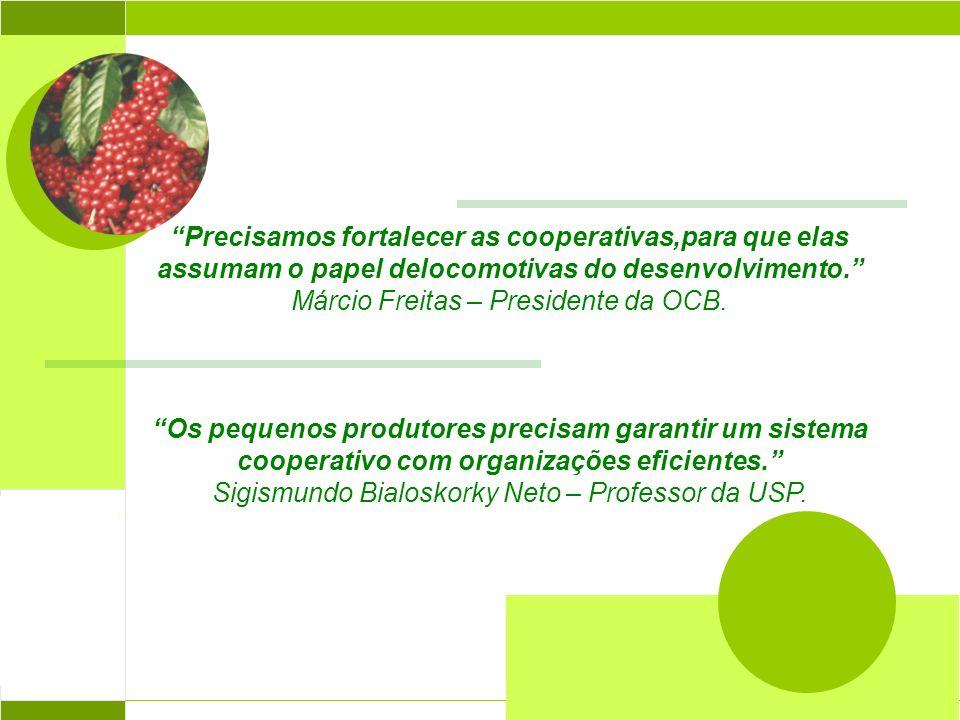 Precisamos fortalecer as cooperativas,para que elas assumam o papel delocomotivas do desenvolvimento. Márcio Freitas – Presidente da OCB. Os pequenos