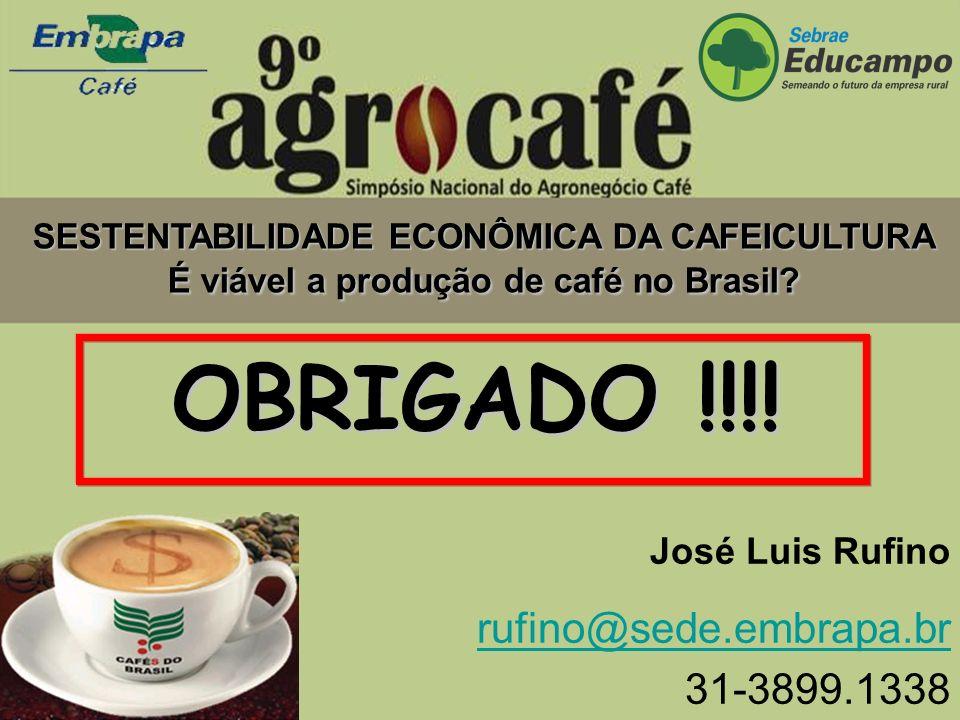 José Luis Rufino rufino@sede.embrapa.br 31-3899.1338 SESTENTABILIDADE ECONÔMICA DA CAFEICULTURA É viável a produção de café no Brasil? OBRIGADO !!!!