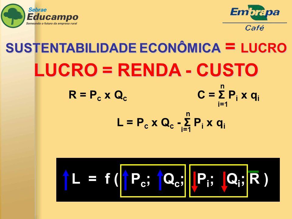C = Σ P i x q i R = P c x Q c L = P c x Q c - Σ P i x q i i=1 n n L = f ( P c ; Q c ; P i ; Q i ; R ) SUSTENTABILIDADE ECONÔMICA = LUCRO LUCRO = RENDA - CUSTO