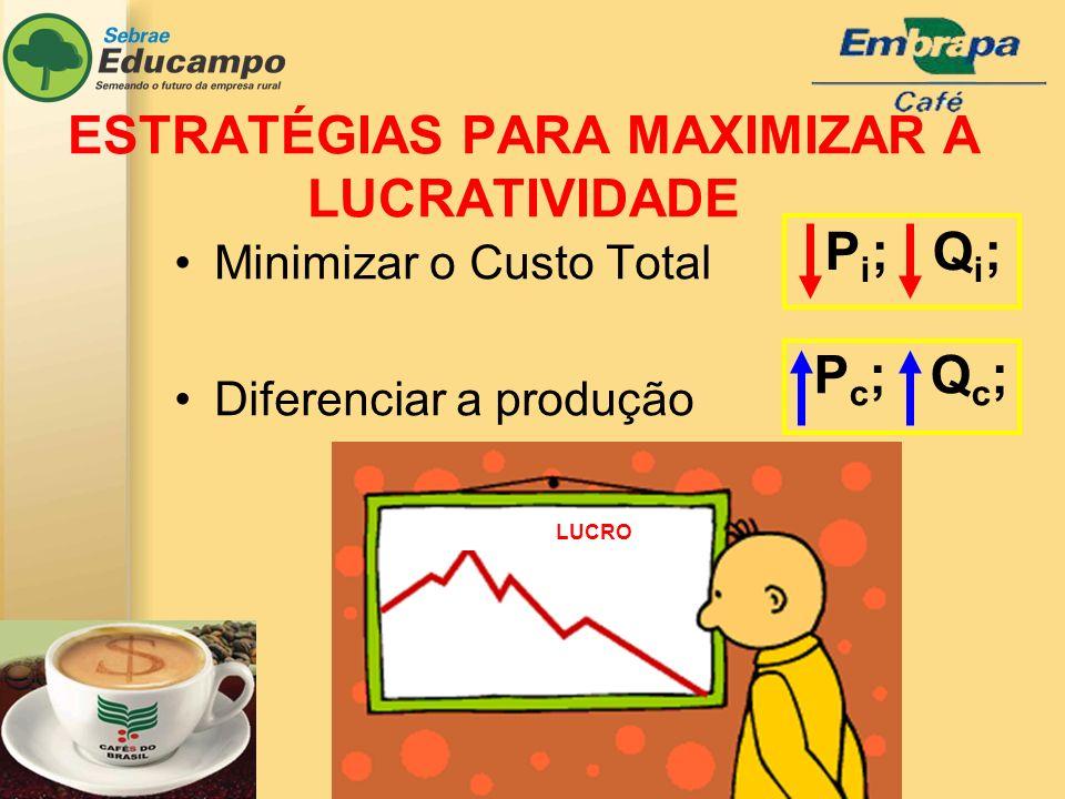 P c ; Q c ; P i ; Q i ; Minimizar o Custo Total Diferenciar a produção LUCRO ESTRATÉGIAS PARA MAXIMIZAR A LUCRATIVIDADE