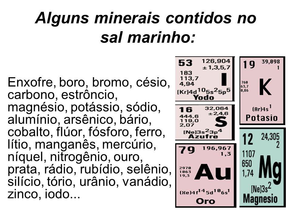Alguns minerais contidos no sal marinho: Enxofre, boro, bromo, césio, carbono, estrôncio, magnésio, potássio, sódio, alumínio, arsênico, bário, cobalt