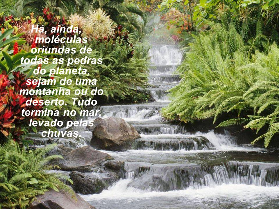 Há, ainda, moléculas oriundas de todas as pedras do planeta, sejam de uma montanha ou do deserto. Tudo termina no mar, levado pelas chuvas.