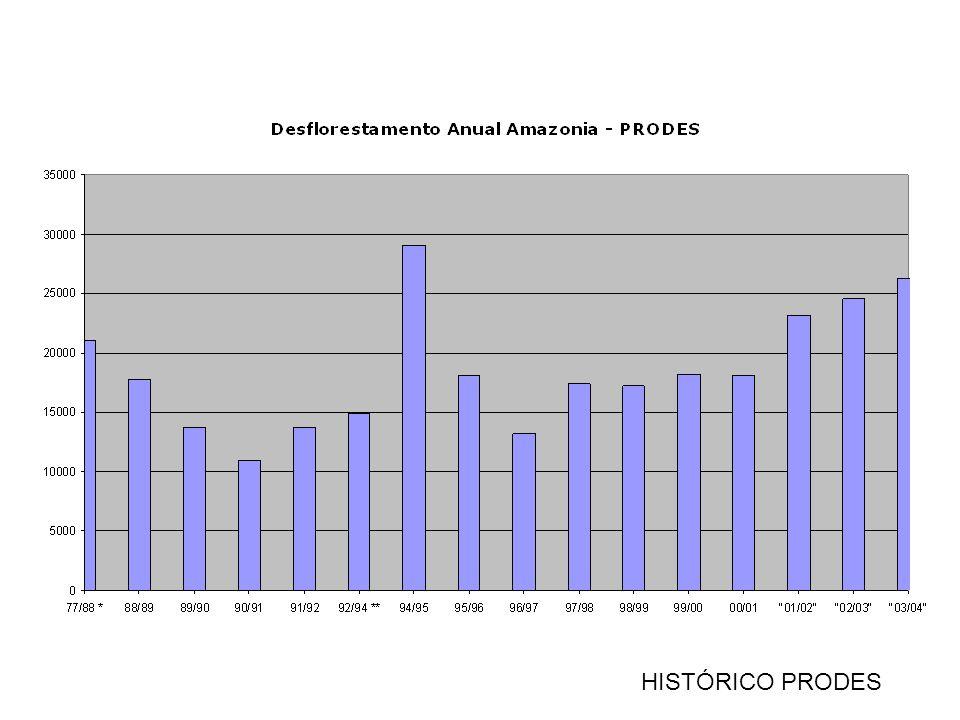 Municípios com Maiores Desmatamentos em 2004 km2