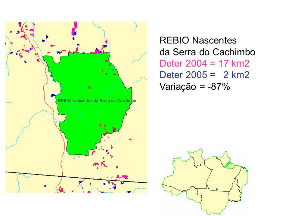 REBIO Nascentes da Serra do Cachimbo Deter 2004 = 17 km2 Deter 2005 = 2 km2 Variação = -87%