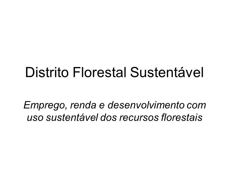 Distrito Florestal Sustentável Emprego, renda e desenvolvimento com uso sustentável dos recursos florestais