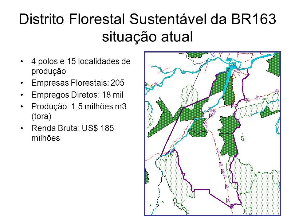 4 polos e 15 localidades de produção Empresas Florestais: 205 Empregos Diretos: 18 mil Produção: 1,5 milhões m3 (tora) Renda Bruta: US$ 185 milhões Di