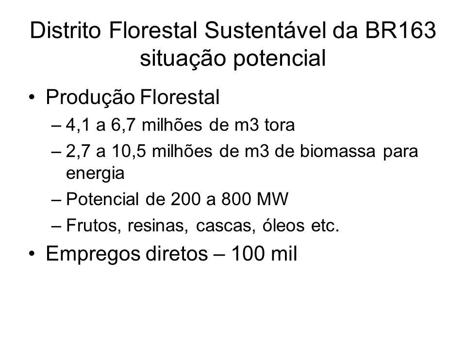 Produção Florestal –4,1 a 6,7 milhões de m3 tora –2,7 a 10,5 milhões de m3 de biomassa para energia –Potencial de 200 a 800 MW –Frutos, resinas, casca