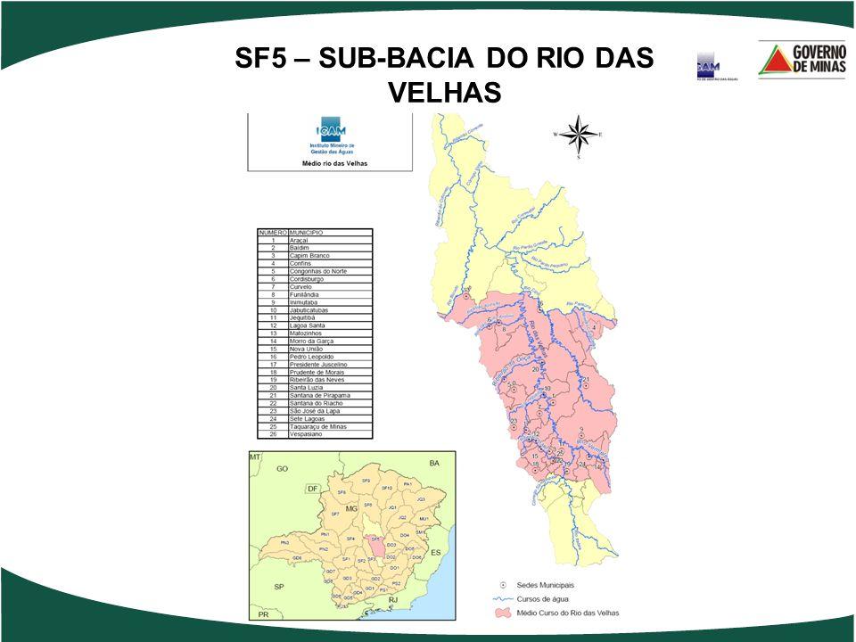 SF5 – SUB-BACIA DO RIO DAS VELHAS