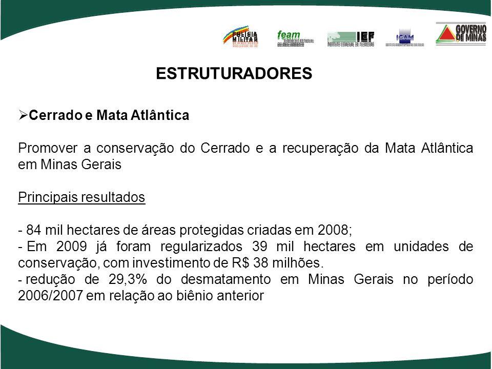ESTRUTURADORES Cerrado e Mata Atlântica Promover a conservação do Cerrado e a recuperação da Mata Atlântica em Minas Gerais Principais resultados - 84 mil hectares de áreas protegidas criadas em 2008; - Em 2009 já foram regularizados 39 mil hectares em unidades de conservação, com investimento de R$ 38 milhões.