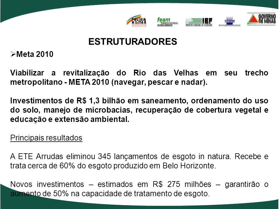 ESTRUTURADORES Meta 2010 Viabilizar a revitalização do Rio das Velhas em seu trecho metropolitano - META 2010 (navegar, pescar e nadar).
