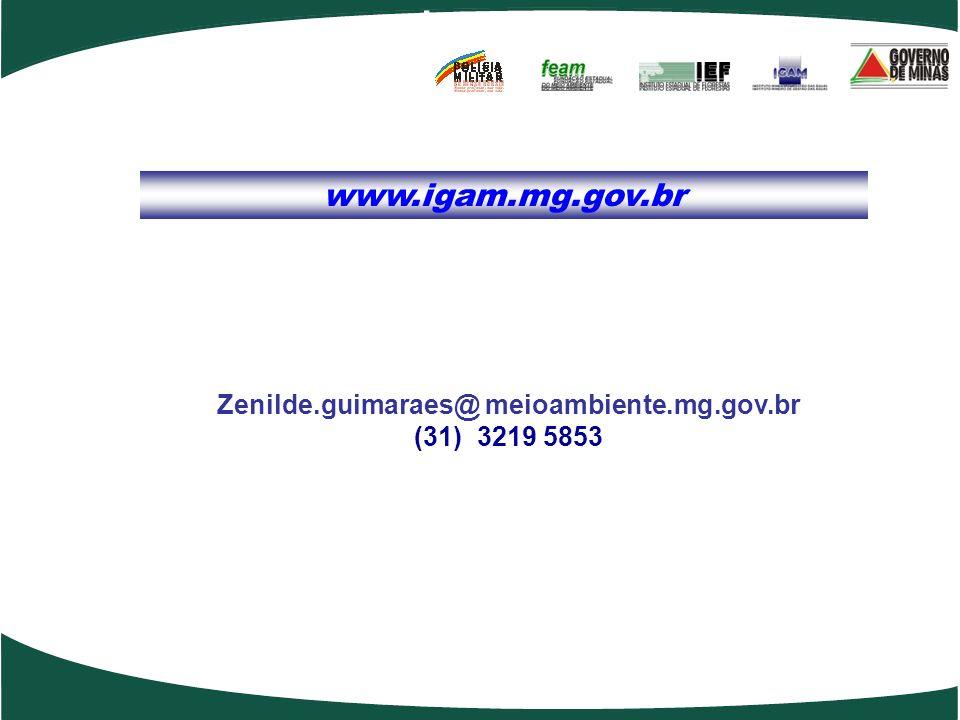 www.igam.mg.gov.br Internet ACESSO A INTERNET; Zenilde.guimaraes@ meioambiente.mg.gov.br (31) 3219 5853