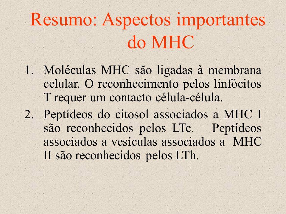 Resumo: Aspectos importantes do MHC 1.Moléculas MHC são ligadas à membrana celular. O reconhecimento pelos linfócitos T requer um contacto célula-célu