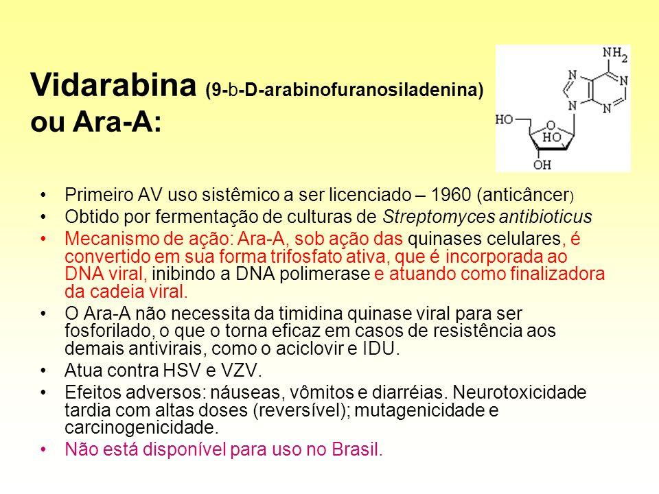 Primeiro AV uso sistêmico a ser licenciado – 1960 (anticâncer ) Obtido por fermentação de culturas de Streptomyces antibioticus Mecanismo de ação: Ara