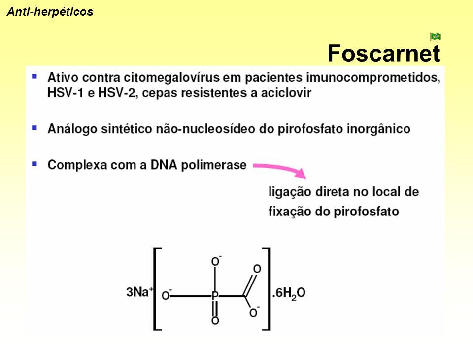 Foscarnet Anti-herpéticos