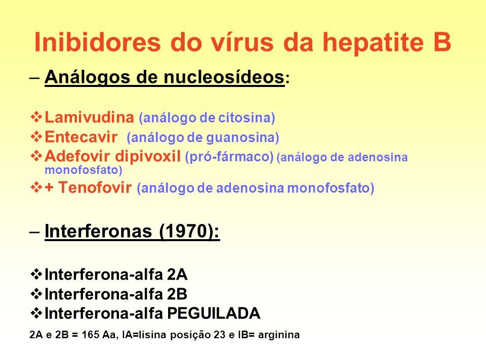 Inibidores do vírus da hepatite B –Análogos de nucleosídeos : Lamivudina (análogo de citosina) Entecavir (análogo de guanosina) Adefovir dipivoxil (pr