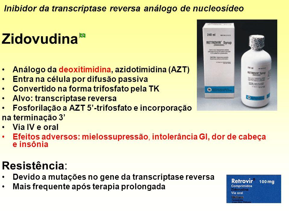 Zidovudina Análogo da deoxitimidina, azidotimidina (AZT) Entra na célula por difusão passiva Convertido na forma trifosfato pela TK Alvo: transcriptas