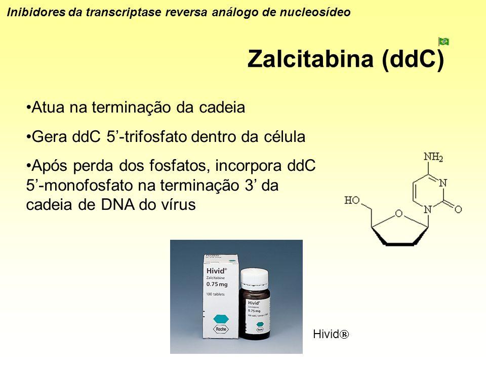 Zalcitabina (ddC) Inibidores da transcriptase reversa análogo de nucleosídeo Atua na terminação da cadeia Gera ddC 5-trifosfato dentro da célula Após