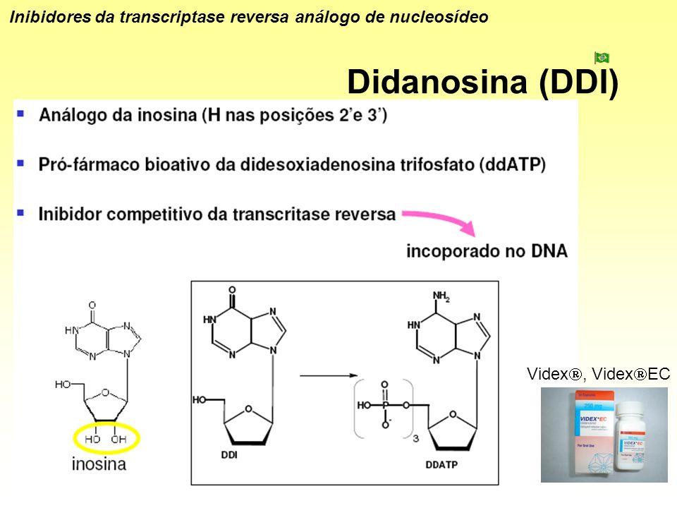 Didanosina (DDI) Inibidores da transcriptase reversa análogo de nucleosídeo Videx, Videx EC