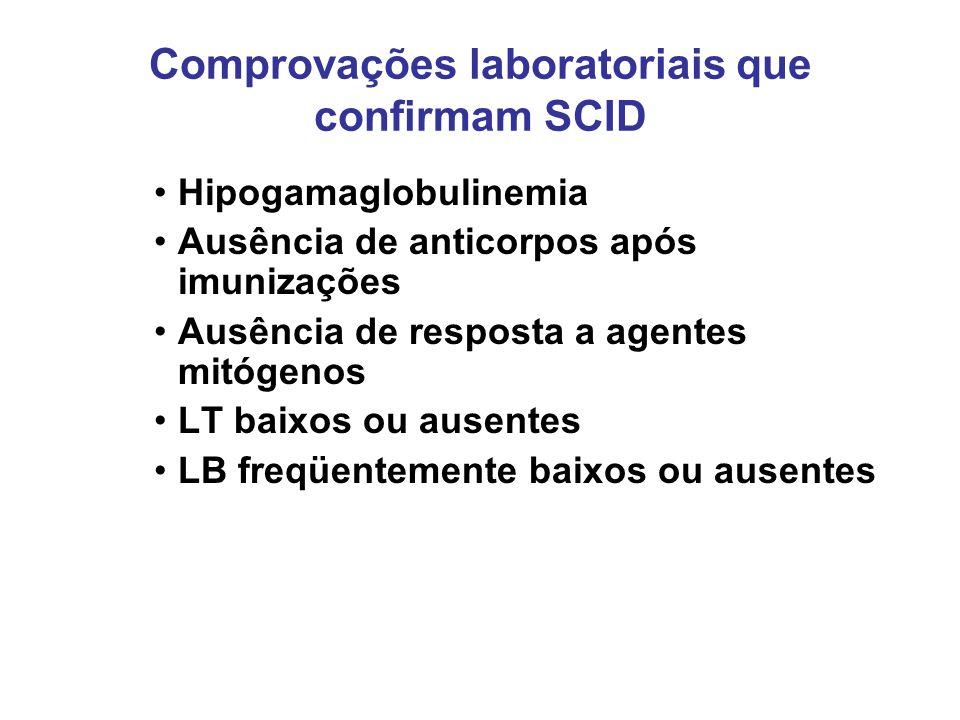 Comprovações laboratoriais que confirmam SCID Hipogamaglobulinemia Ausência de anticorpos após imunizações Ausência de resposta a agentes mitógenos LT