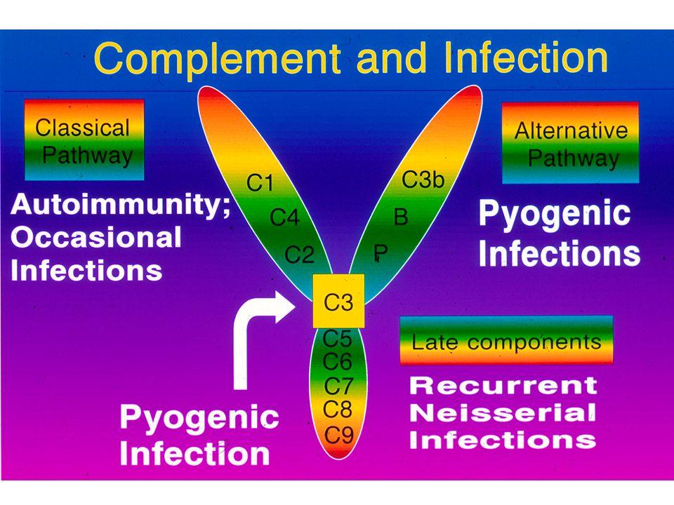 Padrões das infecções nas imunodeficiências: