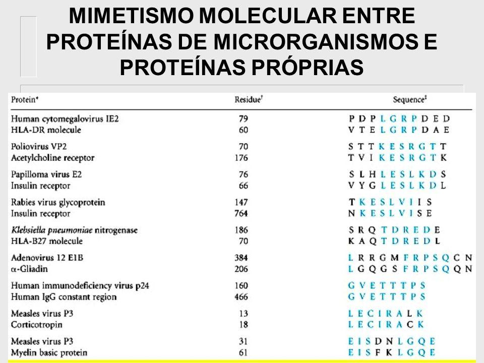 MIMETISMO MOLECULAR ENTRE PROTEÍNAS DE MICRORGANISMOS E PROTEÍNAS PRÓPRIAS
