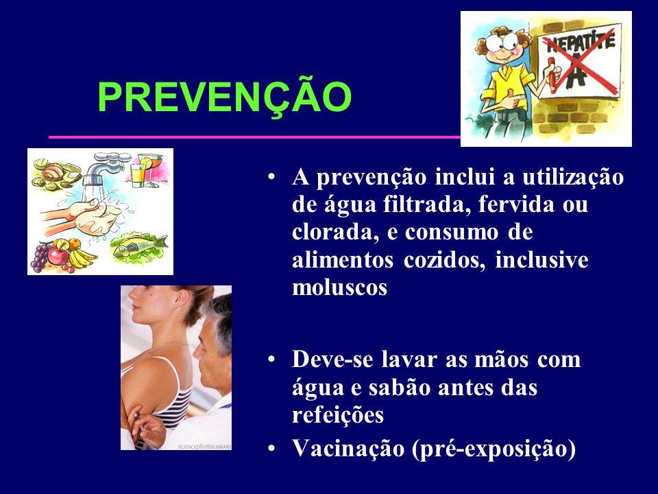 PREVENÇÃO A prevenção inclui a utilização de água filtrada, fervida ou clorada, e consumo de alimentos cozidos, inclusive moluscos Deve-se lavar as mãos com água e sabão antes das refeições Vacinação (pré-exposição)